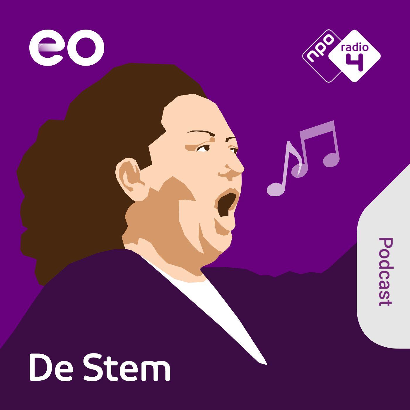 De Stem logo