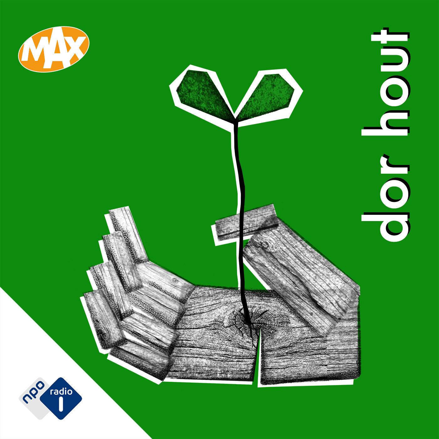 Dor Hout podcast show image