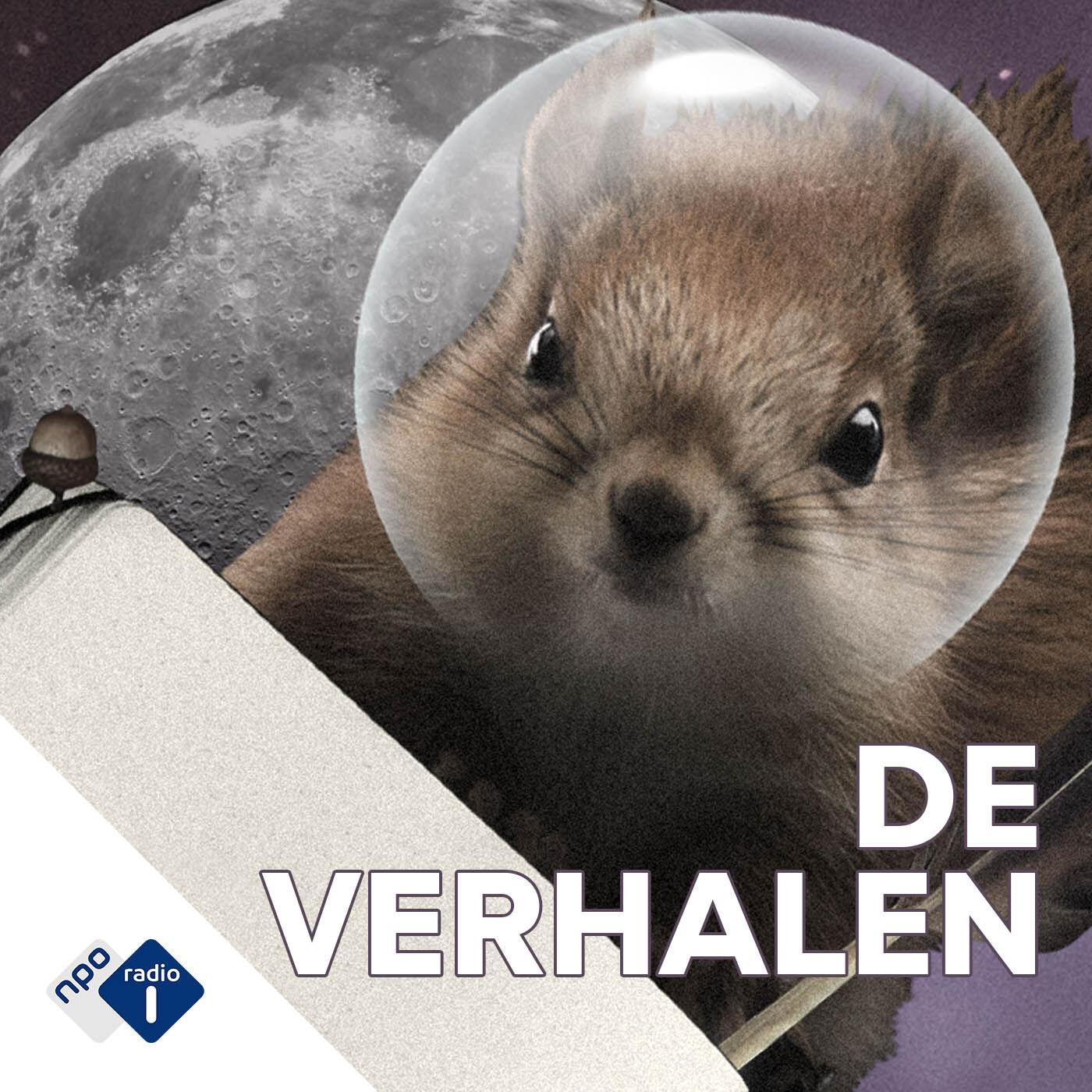 De Verhalen podcast show image